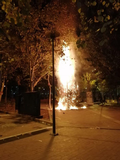 Take responsibility for burned the christmas tree in EX.square image